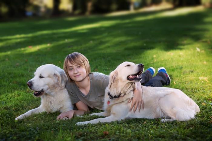 Парень с собаками