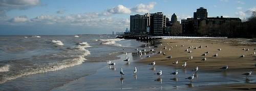 Пляж Лойола Леоне в Чикаго