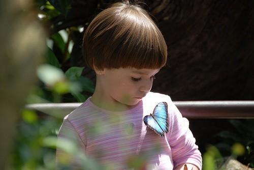Малыш с бабочкой, Форт-Лодердейл