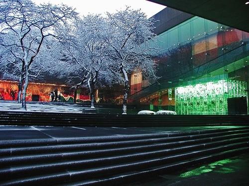 Музей естественной истории Карнеги и Музей искусств Карнеги