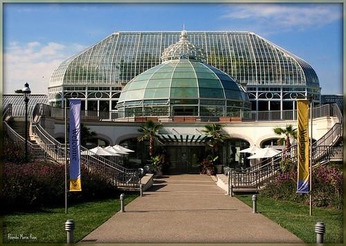Теплица Фипса и ботанические сады