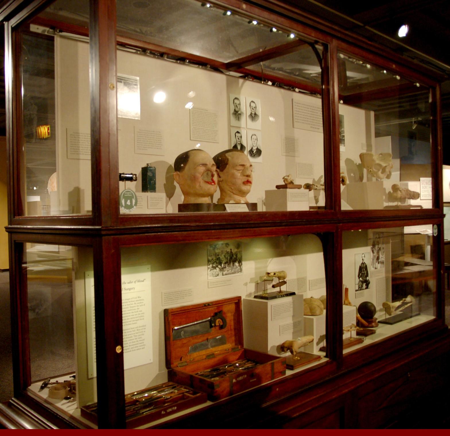 Национальный музей здоровья и медицины в Вашингтоне, округ Колумбия, США