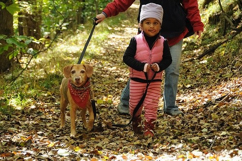Девочка гуляет с собакой в лесу