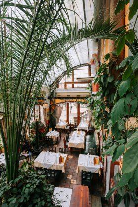 Первак ресторан 12 лучших ресторанов в центре Киева 1