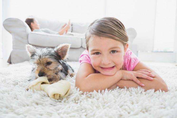 Стоит ли покупать ребенку домашнее животное