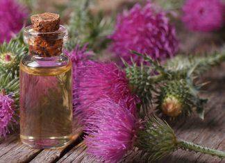 Репейное масло – помощник красоты и здоровья