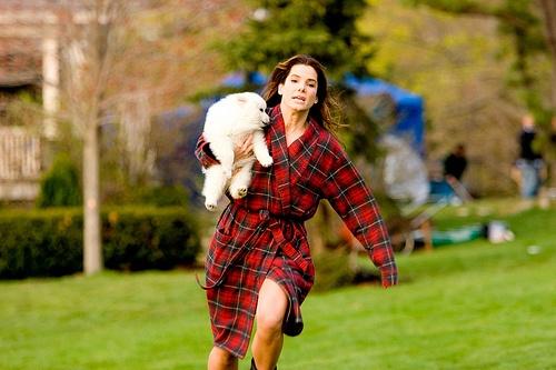 Сандра Буллок бежит с собачкой