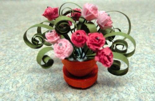 Гофрированные миниатюрные растения