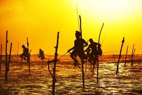 Рыбная ловля в Шри-Ланке