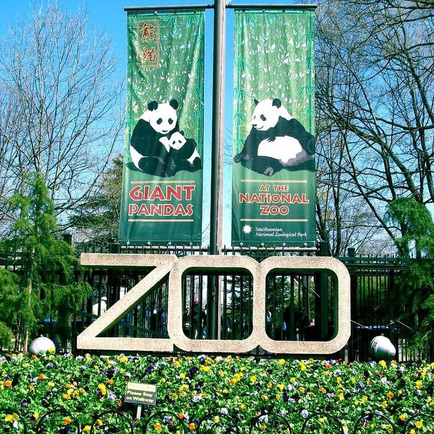 Национальный зоологический парк Smithsonian, Вашингтон