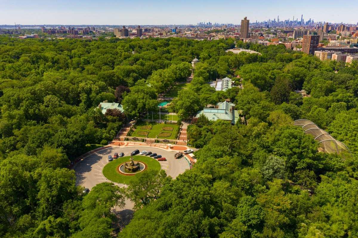 Зоопарк Бронкс, Нью-Йорк