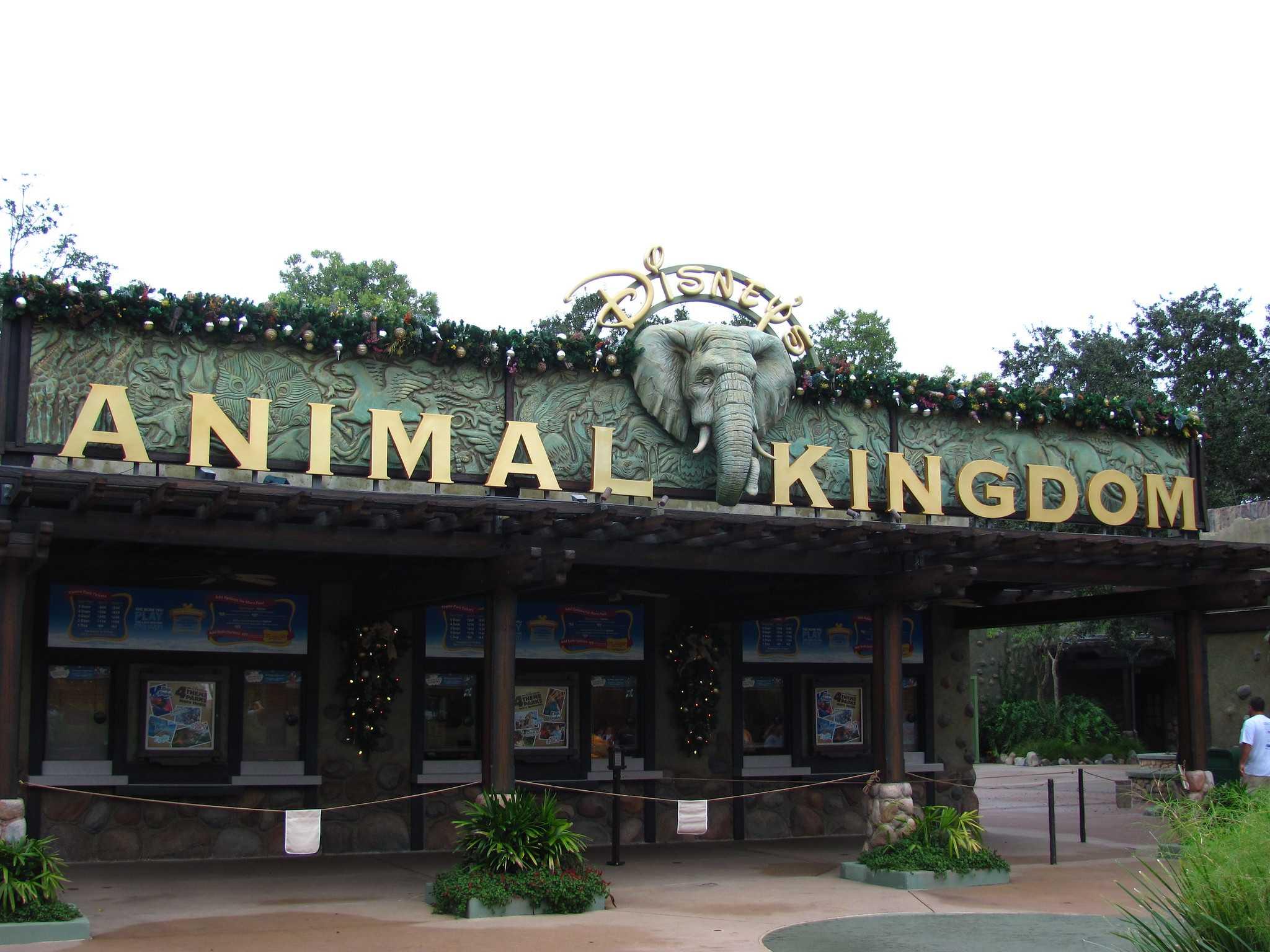 Зоопарк «Королевство животных», Орландо, Флорида, США