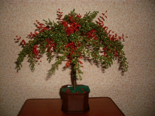 Дерево из бисера «Барбарис»