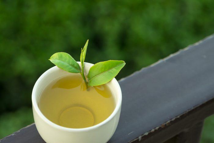 Зеленый чай в белой чашку с веточкой