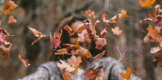 20 идей для незабываемой осени