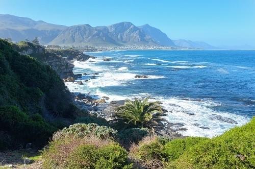 Херманус, Южная Африка
