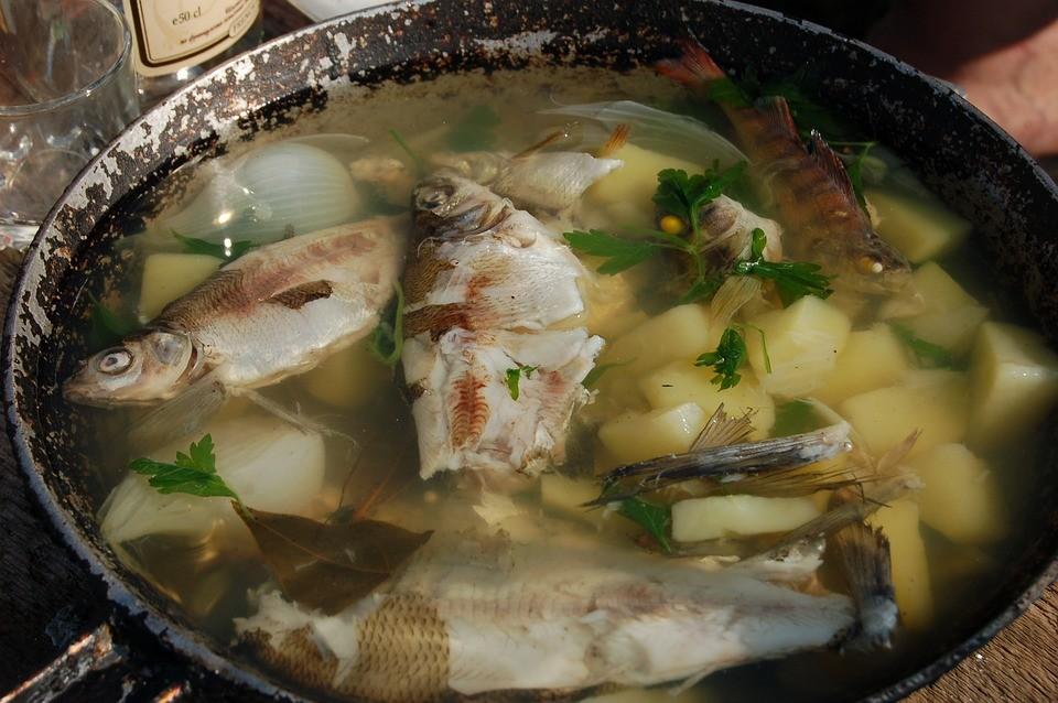 7 простых рецептов для приготовления рыбы - Уха