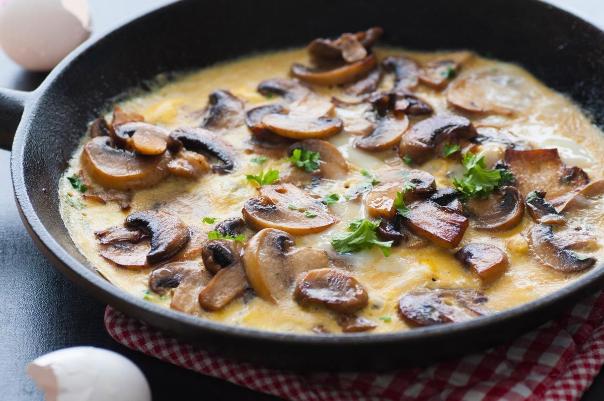Грибной омлет 8 простых и вкусных блюд из грибов