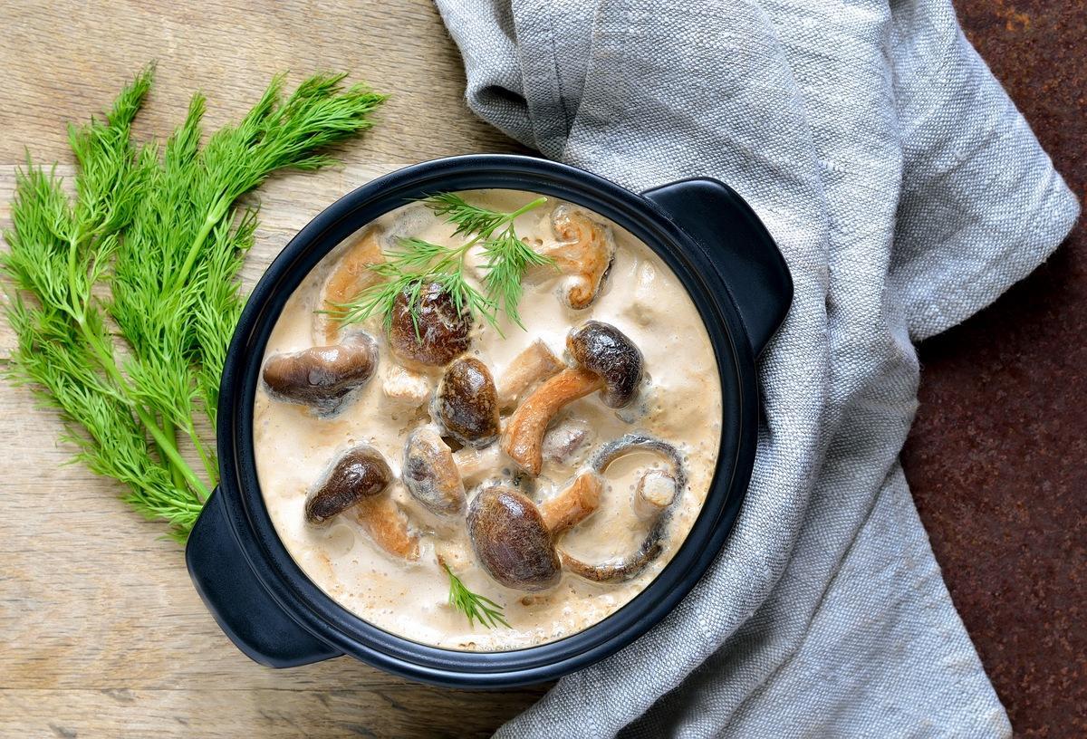 Грибы в сметане 8 простых и вкусных блюд из грибов