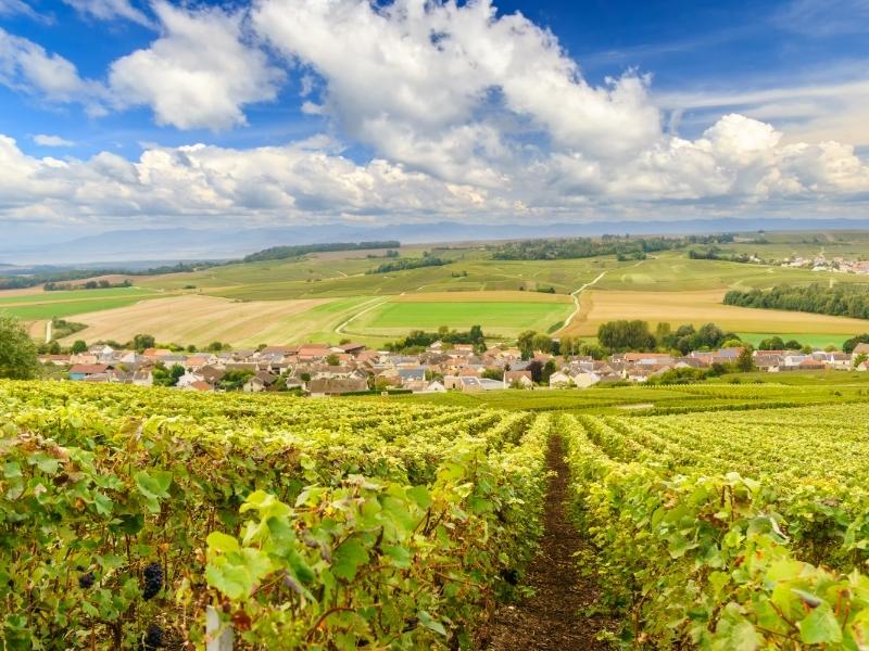 Provinz Champagne - Top 10 Reiseziele in Frankreich