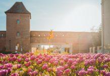 8 мест, которые особенно прекрасны весной