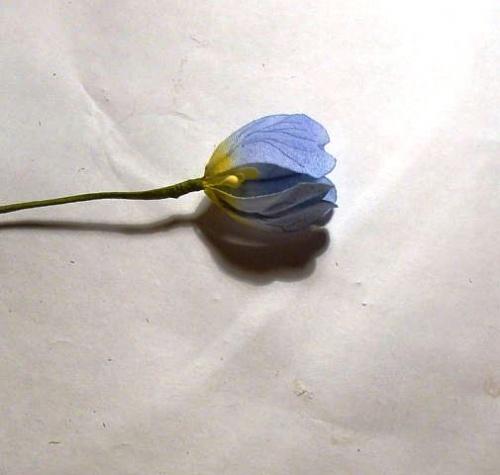часть цветка с тычинкой