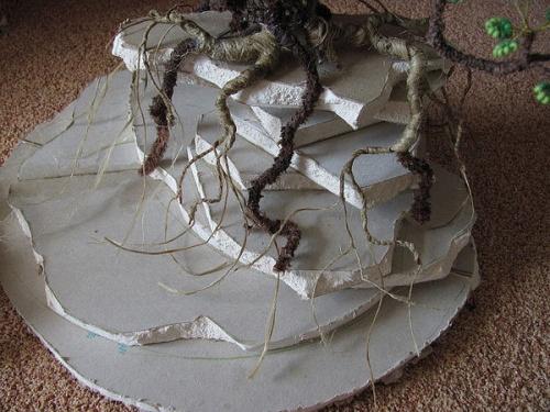 оформление корней дерева бонсай