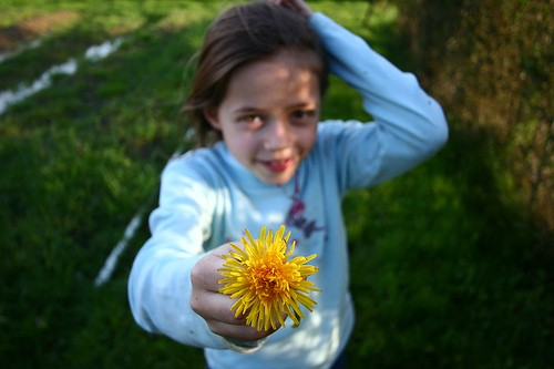 Подарить цветы прохожим