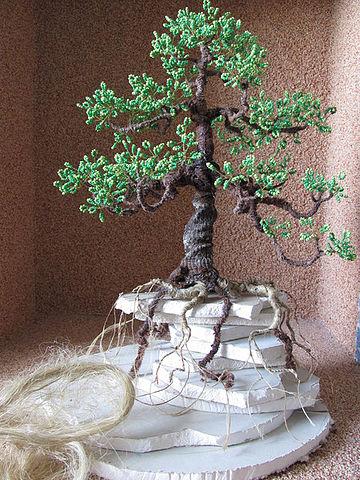 закрепление дерева бонсай на основе