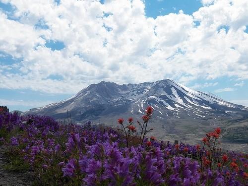 Гора Св. Елены (Сент-Хеленс)