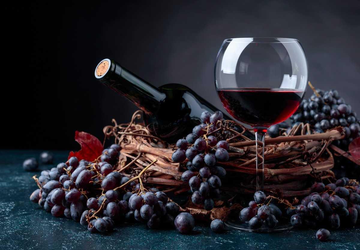 Красное вино из Франции 10 самых здоровых продуктов со всего мира