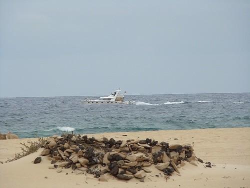Пляж Корралехо, Фуэртевентура