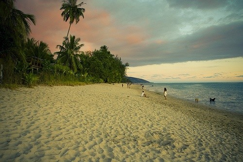 Насладитесь пляжами