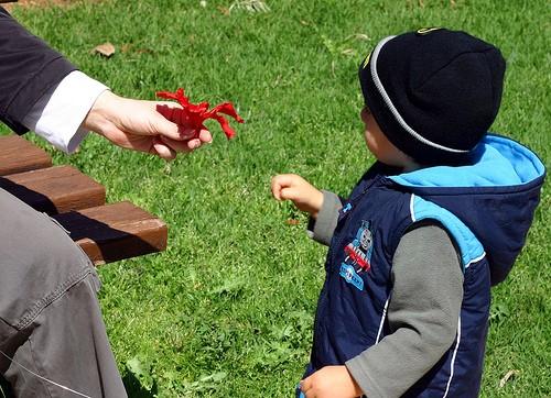 8 Качеств, Которые Стоит Развить у Детей