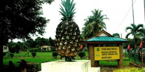 Музей ананасов, Малайзия