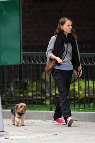 Натали Портман и чудная собачка