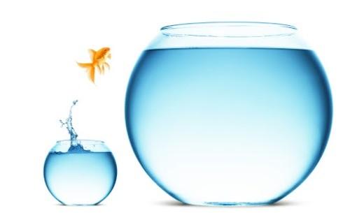 7 Причин Воспользоваться Выпавшим Шансом и Рискнуть