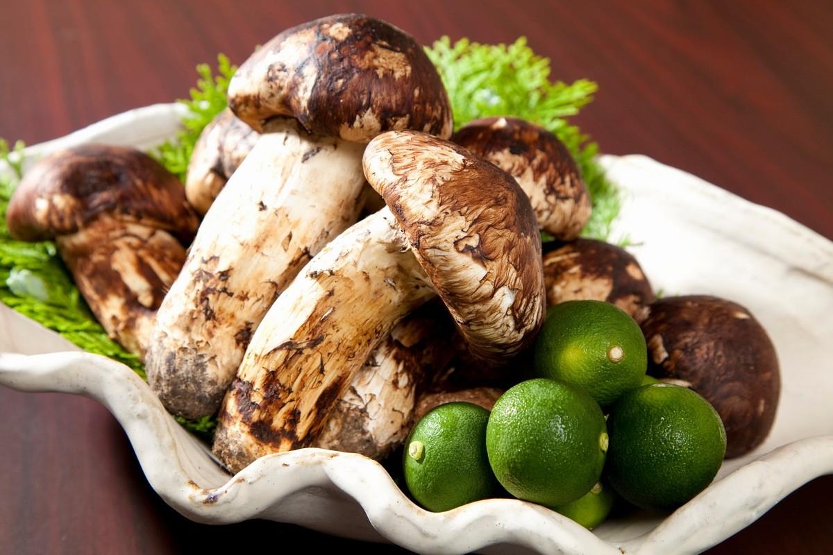 Грибы мацутакэ 8 самых дорогих в мире продуктов питания