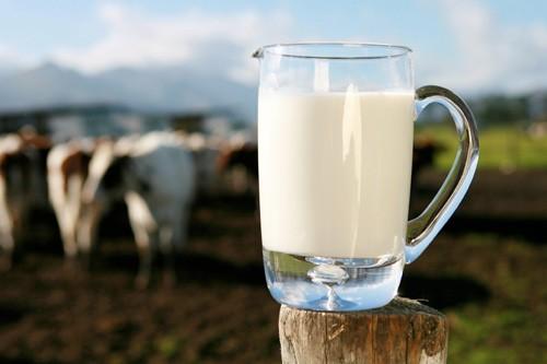 7 Здоровых Причин Пить Натуральное Молоко
