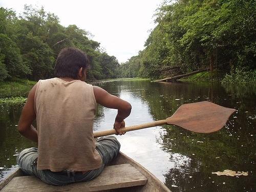 9 Удивительных Фактов о Реке Амазонке и ее Бассейне