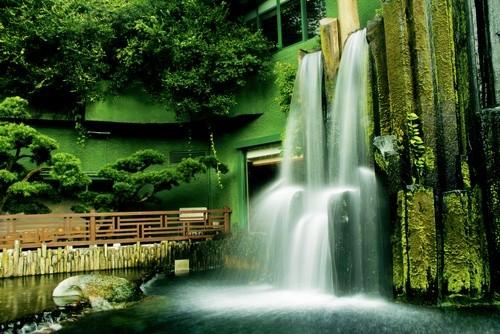 Ботанические сады Сэнт-Люсии