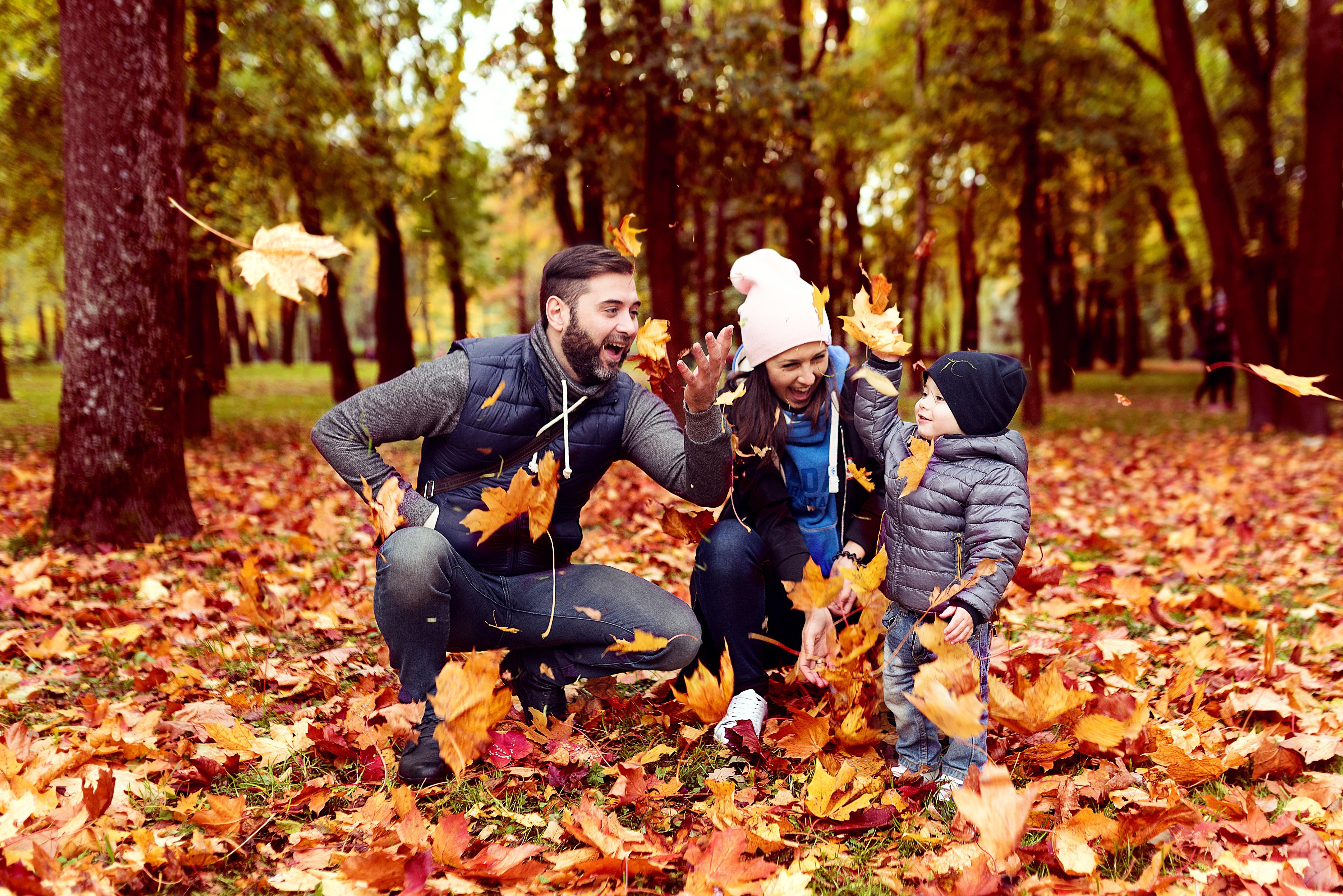 Прыгайте в листьях