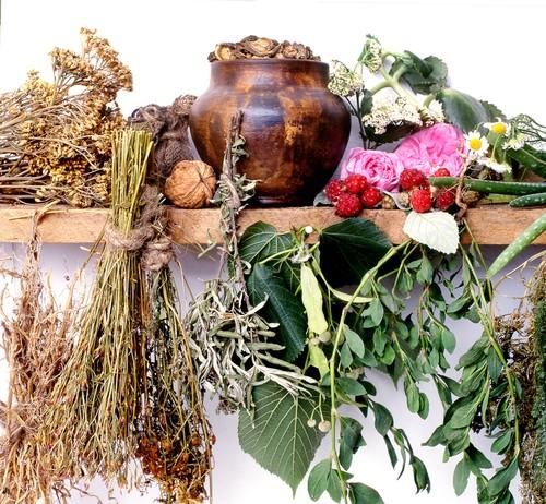 Травяная смесь против простуды