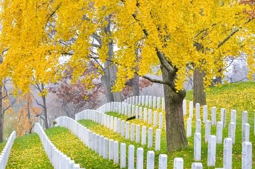 Национальное кладбище Арлингтон, Вашингтон