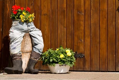 Добавьте интересные кашпо для цветов