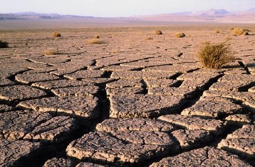 Пустыня Атакама, Южная Америка