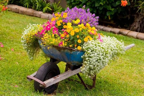 Сделайте креативную клумбу (в виде кровати, садовой тачки)