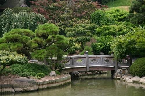 Бруклинский ботанический сад, Нью-Йорк