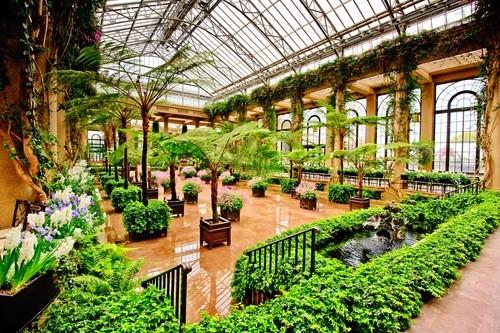 Сады Лонгвуда, площадь Кеннет, Пенсильвания