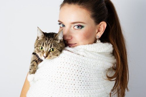 Шерсть кота на одежде